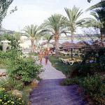 Playa Real, Ibiza, Espanja