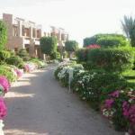 Conrad Resort Sharm, Шарм-Эль-Шэйх, Егіпет