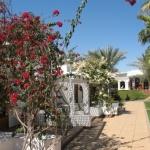 Seti Sharm, Шарм-Эль-Шэйх, Егіпет