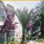 Hill Diar, Сусc, Туніс