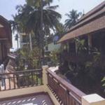 Phi Phi Banyan, Phi Phi, Thaïlande
