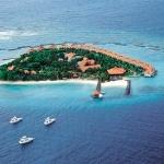 Taj Coral Reef Resort, Северна Мъж Атол, Малдивите
